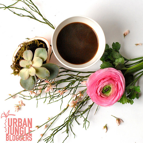 #UJB January: Coffee and Plants